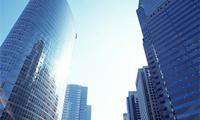 5市开闸 多地表示今年将建立多元化供应格局