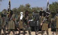 """尼日尔军方开展清剿行动 打死33名?#23433;?#31185;圣地""""武装分子"""