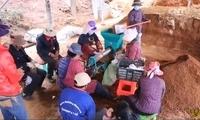 【砥砺奋进的五年】西藏扶贫攻坚调研行:种出希望的种子