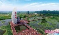 第十五届中国(滕州)微山湖湿地红荷节盛大开幕