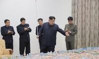 韩媒:金正恩今年的公开活动 超7成是经济外交事务