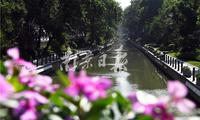 """昔日""""龙须沟""""今变景观河"""