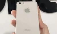 苹果iPhone SE 2消息汇总 玻璃背面+A10处理器