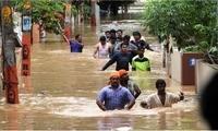 印度暴雨灾情持续恶化 7月以来已致900人死亡