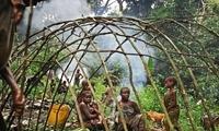 非洲的矮人部落,平均身高不超过1米4,8、9岁生理机能就已成熟