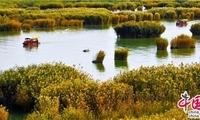 旧时芦苇荡 如今金沙湖:感受宁夏沙湖的蜕变