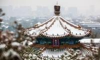 【地评线】雪中行,雪中情