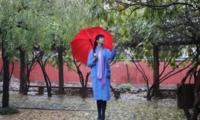雨落一池秋