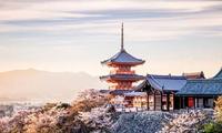 去日本一定要体验的 10 件事!